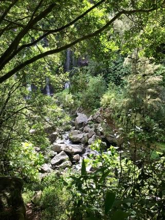 Cascade de Grand Gallet, Riviere de Langevin, Reunion Island Things to do in Reunion Island #waterfall #reunion #nature #traveltips #travels