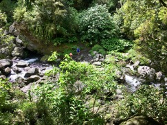 Nature at Cascade de Grand Gallet, Riviere de Langevin, Reunion Island Things to do in Reunion Island #waterfall #reunion #nature #traveltips #travels