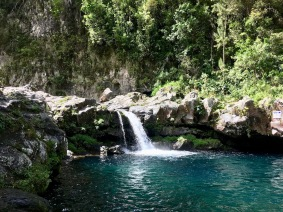 Small waterfall Cascade de Grand Gallet, Riviere de Langevin, Reunion Island Things to do in Reunion Island #waterfall #reunion #nature #traveltips #travels