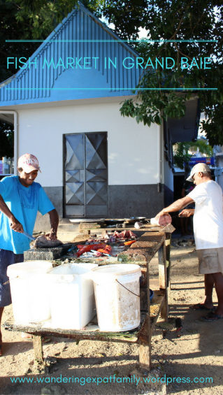 Things to do in Mauritius - Fish Market in Grand Baie
