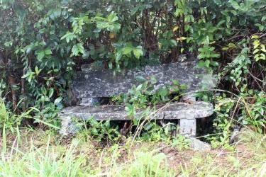 The Broken Bench
