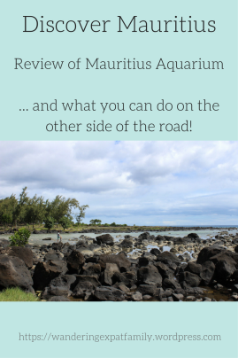 An honest review of Mauritius Aquarium