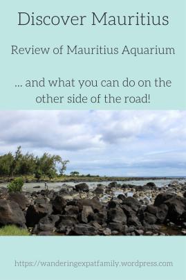 An honest review of Mauritius Aquarium