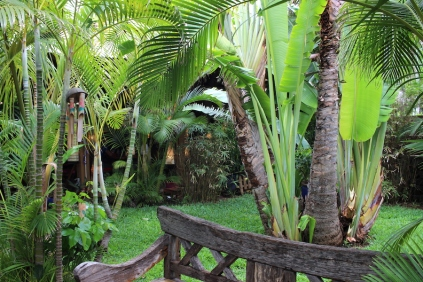 Gardens at Le Manta in Saint-Gilles-Les-Bains, Reunion Island