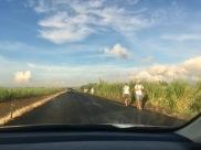 People walking home during Maha Shivaratree in Mauritius