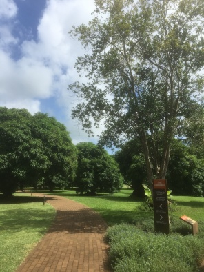 Entrance to the park at Domaine de Labourdonnais - century old mango trees and different spices as well. Things to do in Mauritius