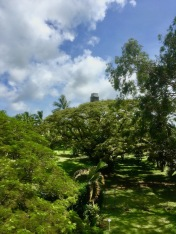 View from the house towards the sugar cane factory at Chateau de Labourdonnais in Mauritius - Things to do in Mauritius