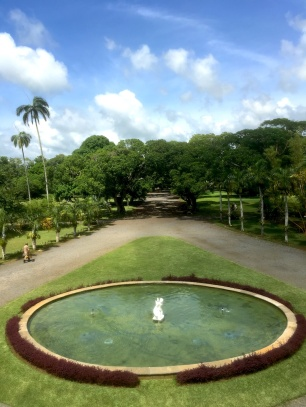 View of gardens at Chateau de Labourdonnais in Mauritius - Things to do in Mauritius