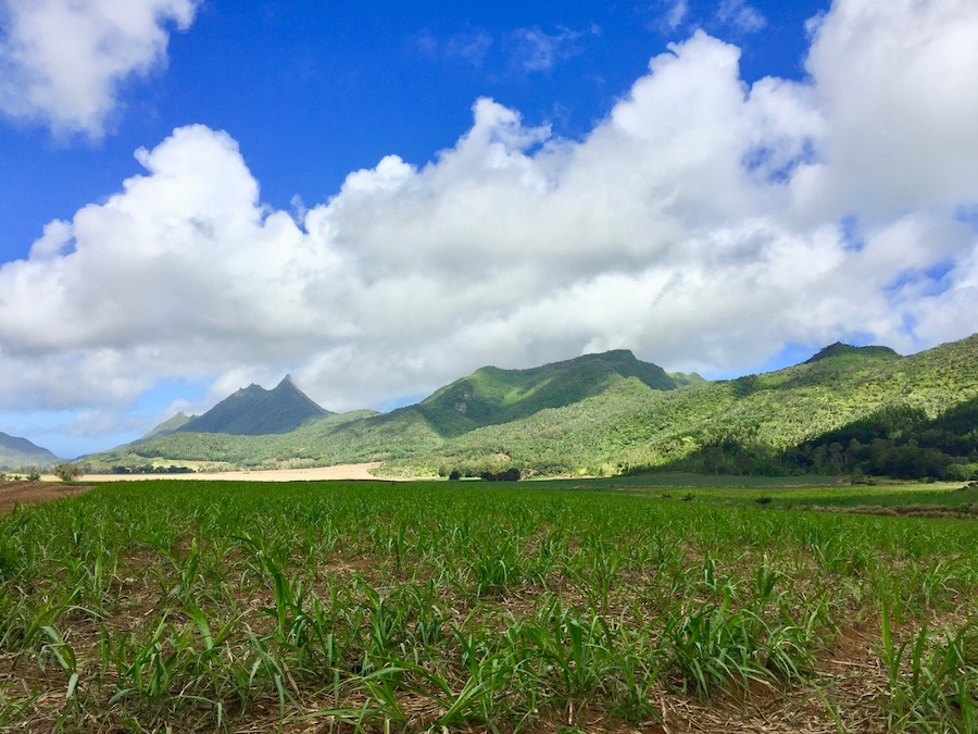 Quad at Domaine de l'Etoile - Winter months are perfect for exploring the other nature side of Mauritius - Mountains, outdoor activities